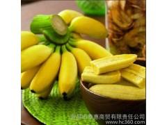 供应泰惠皇帝蕉 香蕉   精品水果